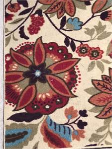 """Floral Area Rug 40 """" x 60 """" recently cleaned area rug $10.00"""