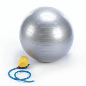 New, Thick PVC Exercise Ball, Silver. Comes with foot pump . Cherry Hill, NJ 08034