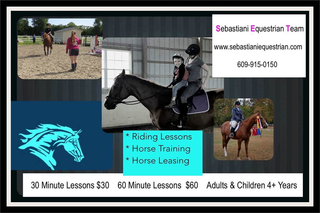 Riding Lessons, Horse Leasing, Horse Training